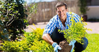 Lawn & Landscape Maintenance Products