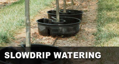 Slowdrip Watering