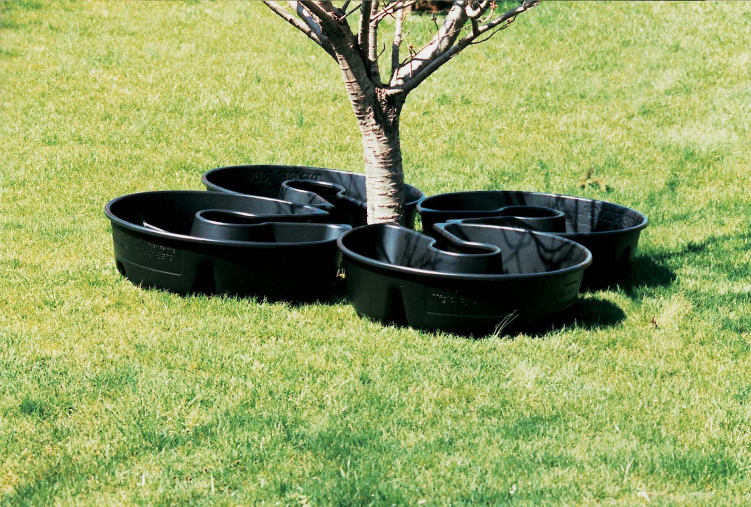 Image result for irrigation rings for trees