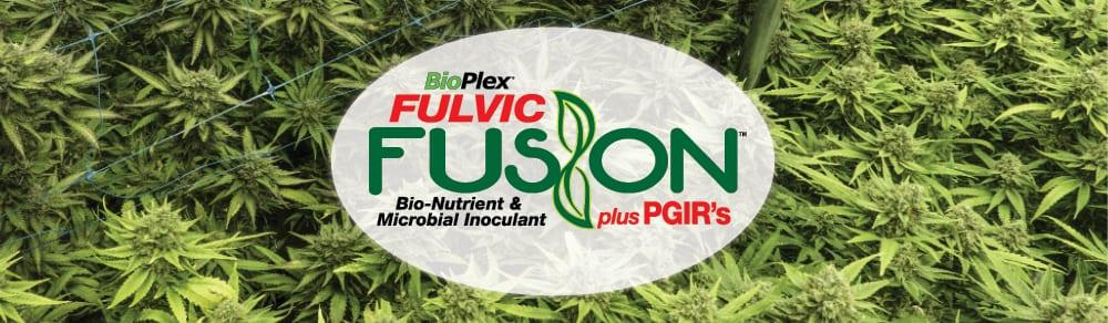 Fulvic Fuson